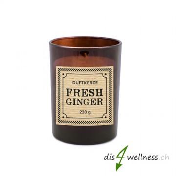 """Pajoma - Braunglaskerze Apothecary """"Fresh Ginger"""""""