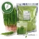 Weizengras Pulver aus Deutschland, zertifiziert, 500g