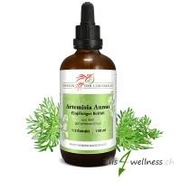 Artemisia Annua Extrakt (Einjähriger Beifuss) - Phoenix der Lebenskraft , 100 ml
