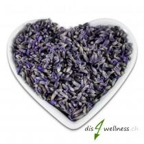 Lavendelblüten getrocknet, für die Zubereitung von Lavendeltee