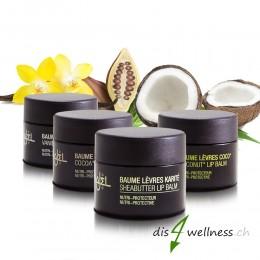 Lippenbalsam Lippenpflege mit Sheabutter und Kokosöl