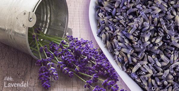 Lavendelblueten für Tee